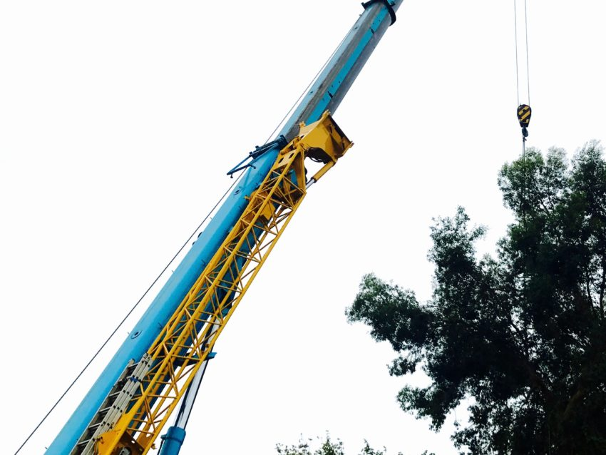 Crane used in Tree surgery